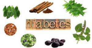 herbs for diabetics