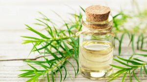 8 Amazing Benefits and Uses of Tea Tree Oil for Hai
