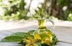 Ylang Ylang The Mighty and Magical Oil